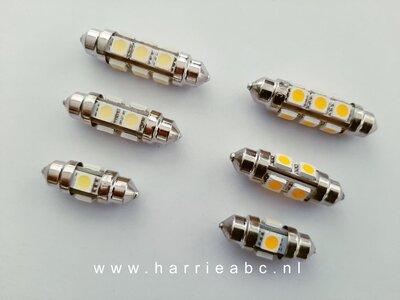 Buis lampjes 12 volt in diverse lengte 31, 39 en 42 mm in kleur wit en warm wit